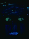 Inside the Canadian Pavillion at the EXPO2000 in Hannover - Main show: Multimedia show with water and light effects